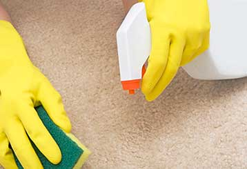 First Aid for Carpet Stains | Hacienda Heights, CA