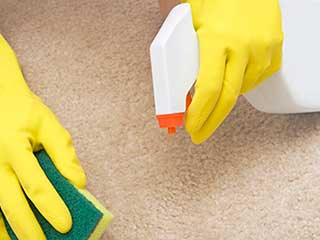 First Aid for Carpet Stains | Hacienda Heights Carpet Cleaning